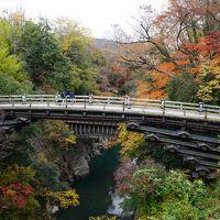 2017.11 甲斐の猿橋と恵林寺の紅葉