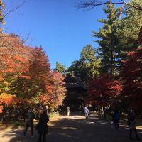 2017年11月 埼玉散策� 平林寺の紅葉を楽しむ
