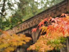 紅葉を撮りに京都へ ひとり旅 1泊2日