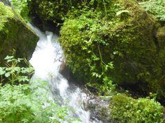 夏の軽井沢バカンス♪ Vol2 ☆嬬恋村:美しい「たまだれの滝」♪