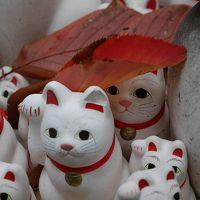 【東京】 招き猫の寺 豪徳寺へ行ってみた