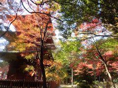不便な場所の素敵な寺院・石峯寺(しゃくぶじ)