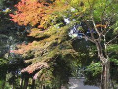 紅葉の神明社を訪問する