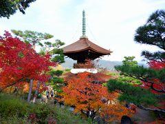 京都 ひたすら寺院を巡り紅葉をめでる一人旅(その3)