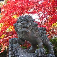 古峯園の紅葉を見に出かけ、古峯神社の御朱印も頂いてきました
