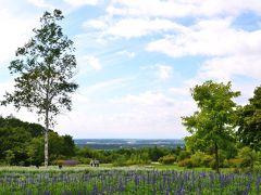 [十勝をぐるり]花と自然と畑の恵みを楽しむ旅(2)~贅沢野菜のランチと、丘の上の花園《十勝ヒルズ》