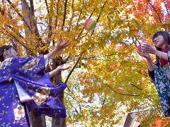 2017紅葉(3)県営各務原公園・自然の遺産の森・法福寺の紅葉