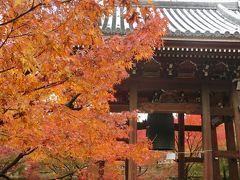 京都('17 紅葉狩り)