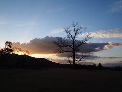 2017年 旅納め 晩秋の奈良へ(前編) ~早朝の飛火野・奈良公園散策と長谷寺の紅葉観賞~