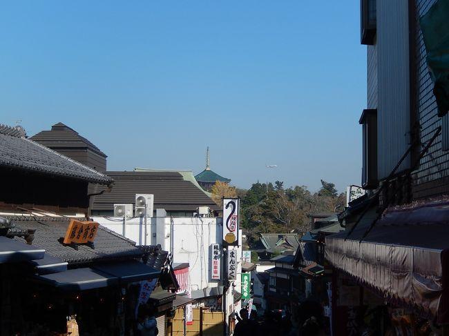 今回のクルーズでジャンボツアーズに決めた理由の一つが<br />最後に成田宿泊がついていること♪<br /><br />私は伊丹空港に戻るのですが<br />早目に帰れる羽田発は成田から羽田は自腹。<br />遅い便でも良いのなら成田発に出来ますと言う事でした。<br />いやいや、ここまで来たら成田山でしょ!<br />で成田山観光~♪<br /><br />参考までに<br /> 旅行代金(全観光つき) 239800円<br /> 海側バルコニーキャビン  28000円<br /> ポートチャージ      16500円<br /> 旅客施設使用料      2610円<br /> 値引き(海外)      -250円<br /> 海外出入国税(空港諸税) 7610円<br /> (国内)合流・離団    -385円<br /> (国内)合流・離団    -385円 旅行社への合計金額 296500円<br /><br /> イタリア宿泊税 3ユーロほど現地払い(金額の記憶曖昧^^;)<br /> 船内チップ 10ユーロ×7<br /> ユニセフ募金 1ユーロ(自動的にひかれますが、どうしても嫌と言う人は拒否できるらしいです)<br /><br />