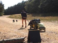 古道巡礼12/36日目 Belorado→San Juan de Ortega 24.3Km  愛犬も一緒にゆっくり巡礼!