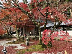 永源寺と湖東三山 紅葉めぐり