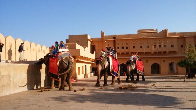 象には一日に三回しか坂を登らせないとかで朝早くアンベール城に向かいました。<br />