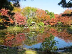 東京都心の紅葉・・都心のオアシス、日比谷公園をめぐります。