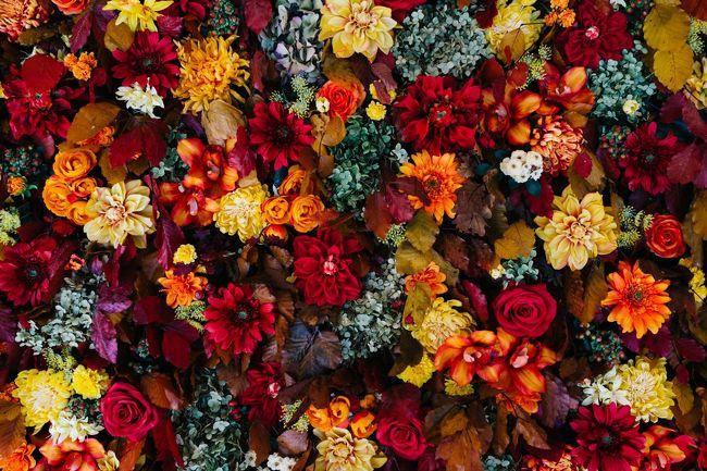 秋の軽井沢へ日帰りでいってみることにした。すごい久々に行ったのだけど、観光地として開発されていて楽しいところだったなあ。<br /><br />買い物して紅葉を眺めてと充実した旅で帰り道の渋滞さえなければな・・というところです。