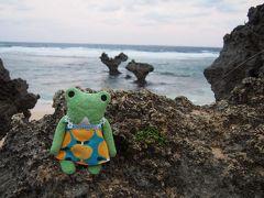 沖縄北部やんばる 命ぐすいの旅 2