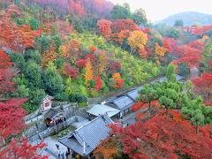京都、紅葉名所めぐり