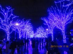 青の洞窟 SHIBUYA・ライトアップ