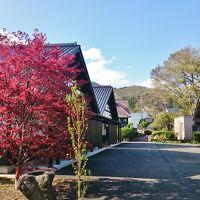 初体験、栃木の藤棚と群馬のSL (8-7) 土合駅と猿ヶ京温泉 旅籠屋丸一