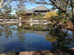 A stroll road in Nara Park!