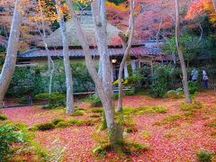 京都らしい風景を求めて晩秋の嵐山・嵯峨野へ(2017)♪