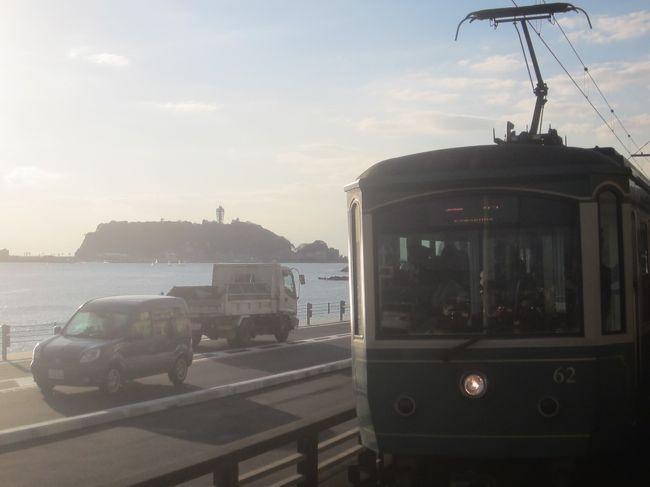 天気が良かったので、ちょっと江の島までお散歩してきました。<br />江の島をぶらぶらした後で、名物のしらすを…<br />生しらすは食べられませんでしたが、かき揚げ丼もおいしかったですよ。<br />そのあと腹ごなしに鎌倉高校前まで歩いて、13,218歩のお散歩となりました。<br /><br />【表紙の写真】江ノ電と江の島