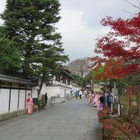 京都の紅葉の旅ーしめくくりと要望ー