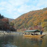 京都紅葉巡り