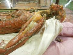 閲覧注意! 切り裂かれた肉体 ・・・スペーコラ美術館 フィレンツェ③ イタリア 9