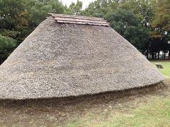 埼玉 水子貝塚公園 縄文の森