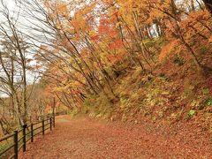 紅葉とクラゲに会いに秋の東北へ (4)東北の人気紅葉スポット 歩くも良し、観ても良しの鳴子峡