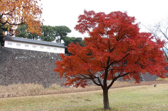 皇居の乾通りの紅葉が一般開放されているとのことなので、見学してきました。<br />自宅から、まずは都営三田線で千石までむかい、六義園の紅葉を見学し、その後南北線で後楽園へ向かい小石川後楽園の紅葉を見学しました。<br />その後、JR飯田橋駅から東京駅に向かい、皇居の乾通りの紅葉を見学してきました。<br />皇居を坂下門から乾門まで通り抜けた後は、平川門から皇居東御苑に入場し、大手門まで突き抜け、大手町から都営三田線で帰路につきました。<br />