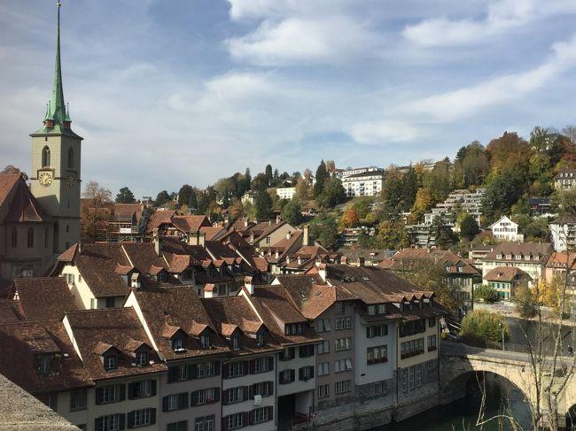 一週間前にふと思い立ち、スイスのバーゼルで開催されるテニスのスイスインドア大会を観に行くことにしました。準々決勝のチケットをリセールで購入、フェデラーが勝ち進むことを祈りながら、いざバーゼルへ。<br />バーゼルだけだとあまり見るところがなさそうなので、世界遺産の街・ベルンも付け足して2泊3日の旅をしてきました。<br />スイスは街はきれいだし、治安いいし、食べ物もワインもおいしいし、英語は通じるしで、女一人旅には最適な国。ますます大好きになりました。最後はちょっとした(?)トラブルもあったけど、まぁそれも旅の醍醐味ということで。。