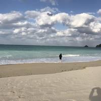 冬の沖縄探検④