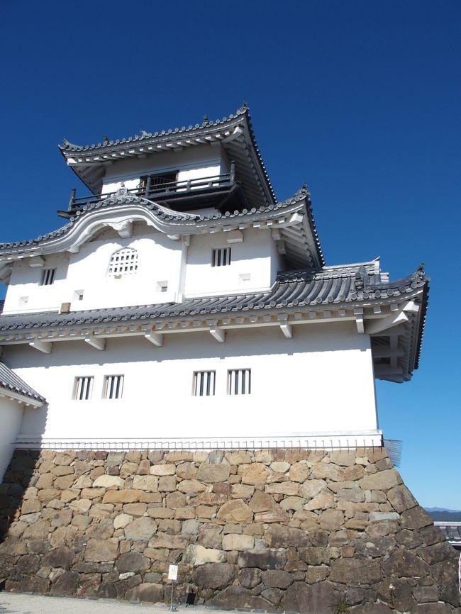 以前から気になっていた掛川にGO!なぜ気になっていたか。。。新幹線から見える掛川城、、気になりませんか笑。。他にも、うなぎが旨いとか、ハシビロコウがいるとか笑、擦れてなくて、何かしら東海道の歴史を残す、いい感じの町だなという印象です。静岡市や浜松にはない良さがあるような気がしました。<br /><br />今回は、掛川に行った後で、清水まで移動し、久々のライブハウスでロックを楽しみ帰ってきました。なかなか密度の濃い一日となり楽しめましたー!