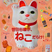 【東京散策69-2】期間限定運行の幸運の招き猫電車に乗って!見た!
