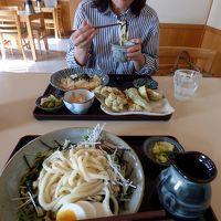 讃岐うどん福梅の昼食 三島市佐野体験農園 ピーマン・トマトの収獲