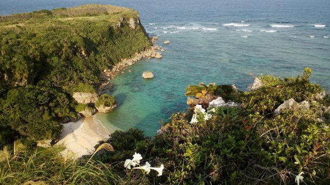 肌寒い東北北部より沖縄へ! 羽田で乗り継ぎもなかなか快適(しかし娘やらかす)。<br />初の沖縄でしたが家族一同大ファンに。春先に行きましたが、子連れの方へ参考になればと。<br />そして、来春も沖縄予定してます。