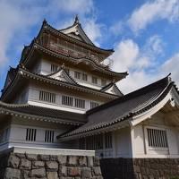 千葉県:亥鼻城、館山城、佐倉城