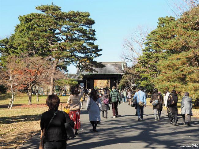 2年ぶりに行われた秋季皇居乾通りの一般公開へ出掛けました。<br />残念ながら紅葉は見頃を過ぎていましたが、待ち時間もなくスムーズに皇居を見学させてもらいました。<br />皇居の後は、日本橋、丸の内などのXmasツリーや、工事が完了した東京駅丸の内広場を見て回りました。<br /><br />今年の秋季皇居乾通りの一般公開は、12月2日~10日の9日間に226千人あまりが訪れたそうです。<br />(昨年は樹木の更新工事のため開催されず。)