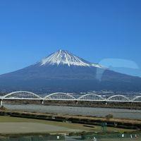 旅するイルカ♪ JRフルムーンパス 日本縦断の旅へ Day2、Day3 函館夜景 東京お台場夜景編