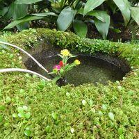 初秋の愛媛旅行♪ Vol24(第2日) ☆大洲:「臥龍山荘」不老庵へ美しい庭園を歩く♪