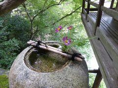 初秋の愛媛旅行♪ Vol25(第2日) ☆大洲:「臥龍山荘」不老庵から素晴らしいパノラマ♪