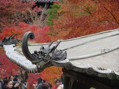 京都紅葉どっぷり旅 ~東福寺 南禅寺