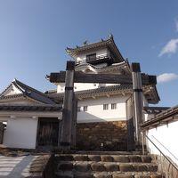 冬の青春18きっぷで静岡3城巡りpart2掛川編