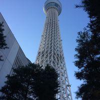 東京スカイツリー登頂記