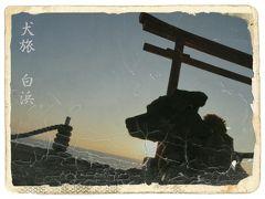白浜(伊豆)の旅行記