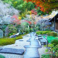 紅葉と清流を楽しむ♪晩秋の伊豆~静岡 ドライブ旅☆☆