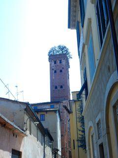 塔の上に森がある  グイニージ塔 ルッカ 3 イタリア 14