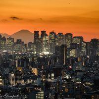 冬晴れの大都会の夕景・夜景、そして久々のイルミネーションがまばゆい